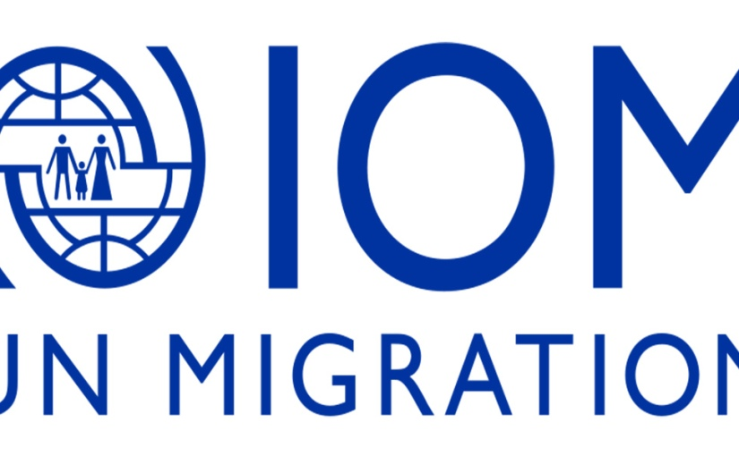 [Call for applicants] IOM Internship: Migration HealthDivision